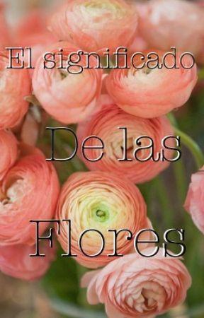 El Significado  De Las Flores by GirlAndShipp