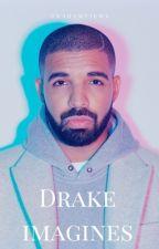 Drake Imagines by Grahamviews