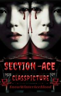 Section-Ace: {CLASS PICTURE} cover