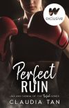Perfect Ruin (BEING PUBLISHED WINTER 2023) cover