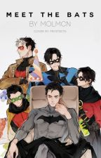Meet the Bats (A Young Justice/Teen Titans Fan Fiction) by MolMcN