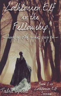 Lothlorien Elf in the Fellowship (Lord of the Rings Fan Fic) cover