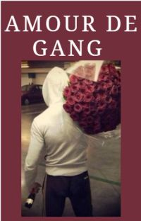 Tome 3: Amour de gang cover