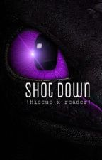 Shot Down (hiccup x reader HTTYD)✔️ by carlee-clair