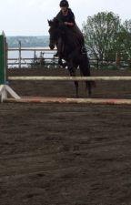 The new rider  by Riganrochemcevoy