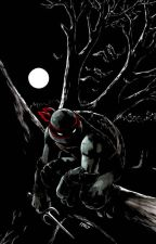 Raphael x reader by Darkness_chan