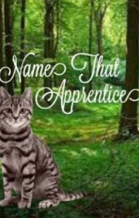 Name That Apprentice by -FanClan-