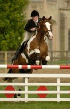 Striving for Show Jumping by horseloveramy