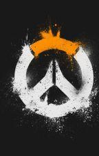 Junk (Overwatch) by _estato_