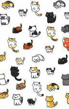 Neko Atsume Cat Guide by EightBit