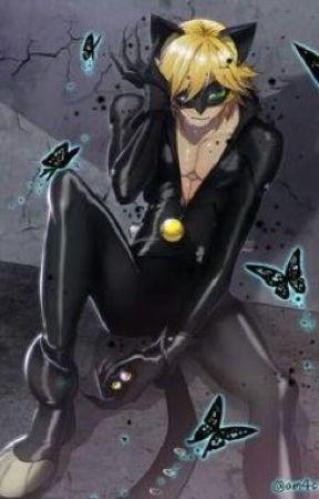 Chat noir x ladybug lemon