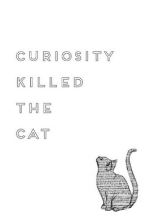 Curiosity Killed The Cat by Ms0reo