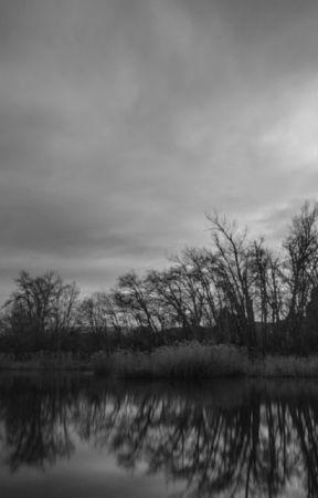 A Nobody  by MelissaCheng