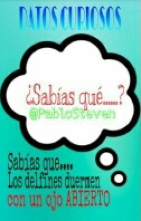 Datos Curiosos  by PabloSteven