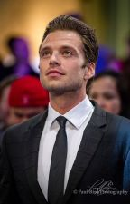 Hearts of New York - A Sebastian Stan Fan Fiction by SailorLuna_