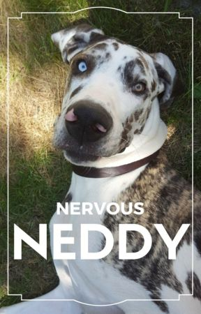 Nervous Neddy by molly