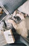 Dormitory ➫ ChanBaek cover