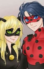 Miraculous Lordbug (Les Aventures de LordBug et Kitty Noir) by Rain-Diamond