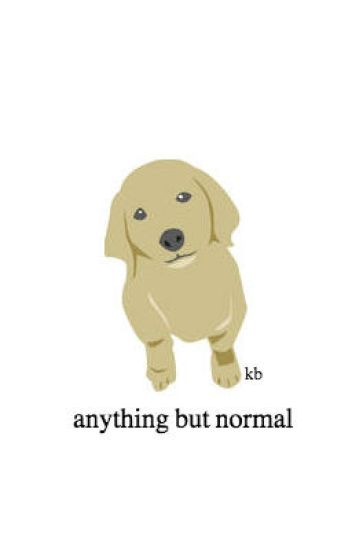 Anything But Normal