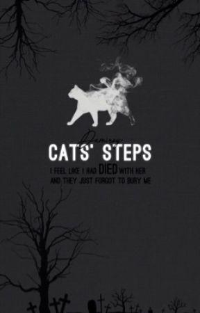 خطوات القطط by damiroy