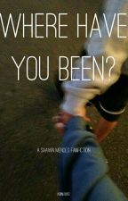 Where Have You Been? Shawn Mendes by kidinlovee