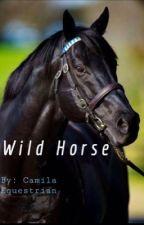Wild Horse by CamilaEquestrian