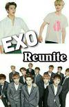 EXO Reunite cover