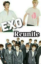 EXO Reunite by exo_rider