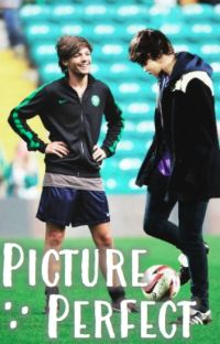 Picture Perfect  | Larry Stylinson ❀ [Mpreg] cover