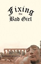 Fixing The Bad Girl by baibeeraccoon