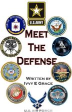Meet the Defense by Aether_Down