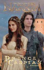 Prince Caspian || Narnia by venusmelina