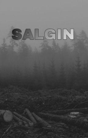 SALGIN  by _jonathanlivingston