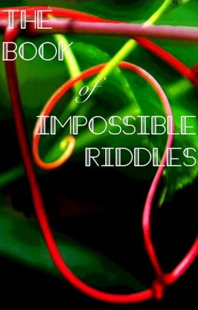 The Book of Impossible Riddles by Cinder221b