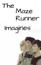 The Maze Runner Imagines by parkerslatte