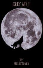 Grey Wolf by Belladonna167