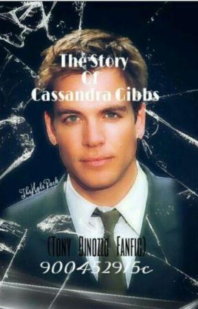 The Story Of Cassandra Gibbs (Tony Dinozzo Fanfic) by 900452915c
