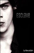 Esclave. [ EN PAUSE ]  by larrystyb44