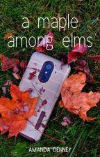 A Maple Among Elms [2017] by amanda_denney_writes