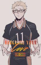 Blocking Your Love (Tsukishima Kei X Reader) by Ojime-chaaan