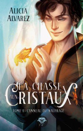 La Chasse aux Cristaux, tome 1 : L'Anneau du Naufragé by AliRosalys