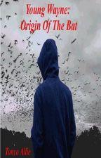 Young Wayne: Origin of the Bat by TonyoAllie