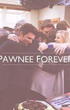 Parks + Recreation: Pawnee Forever by disneylifee