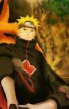 Naruto The Silent Genius  cover