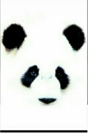 "Concorso ""i Panda"" by Christy-Devis"