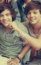 Larry Stylinson Camp [fanfiction PL] by Natalia20221