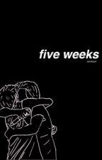 five weeks // lashton by twinkash