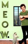 Meow. l.s [tiny kitten Louis] cover