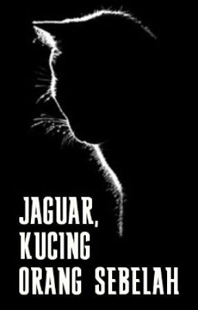 JAGUAR , KUCING ORANG SEBELAH by FiffyHasyHasy