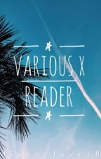 Various x Reader [requests closed][un-edited] by thebiggestsimpp